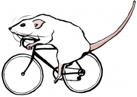 http://teaandink.co.uk/files/gimgs/th-12_cyclerat.jpg